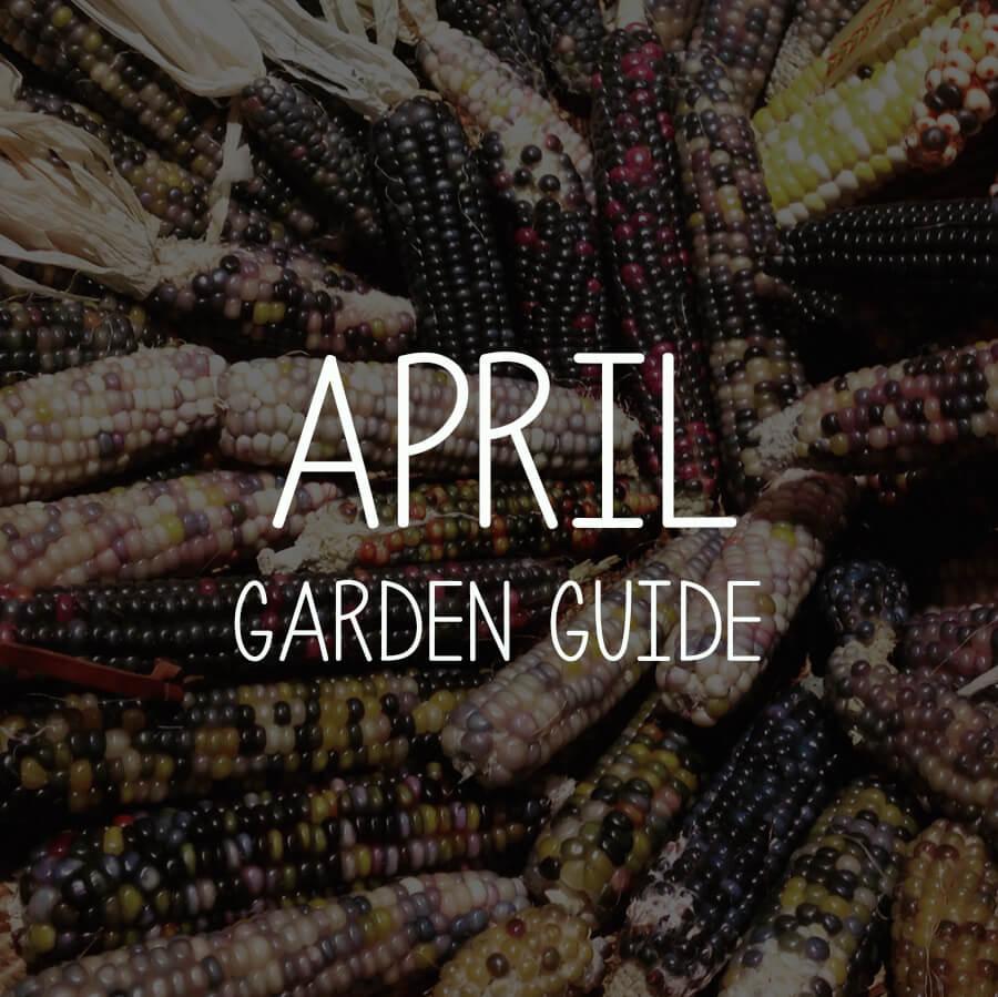 April Garden Guides