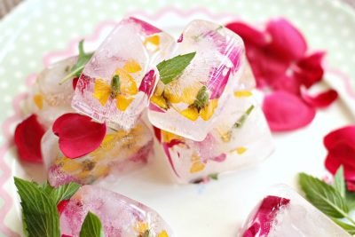 5 Edible Flowers To Grow In Your Garden