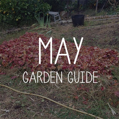 May Garden Guides