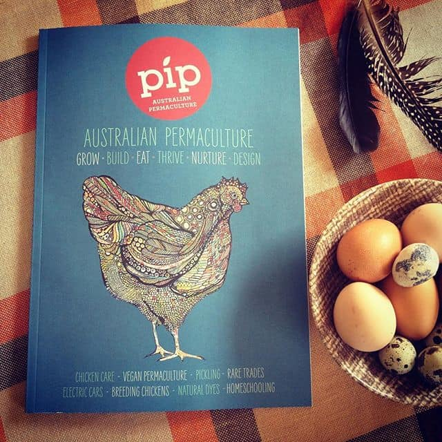 Pip Issue 7 has hatched!