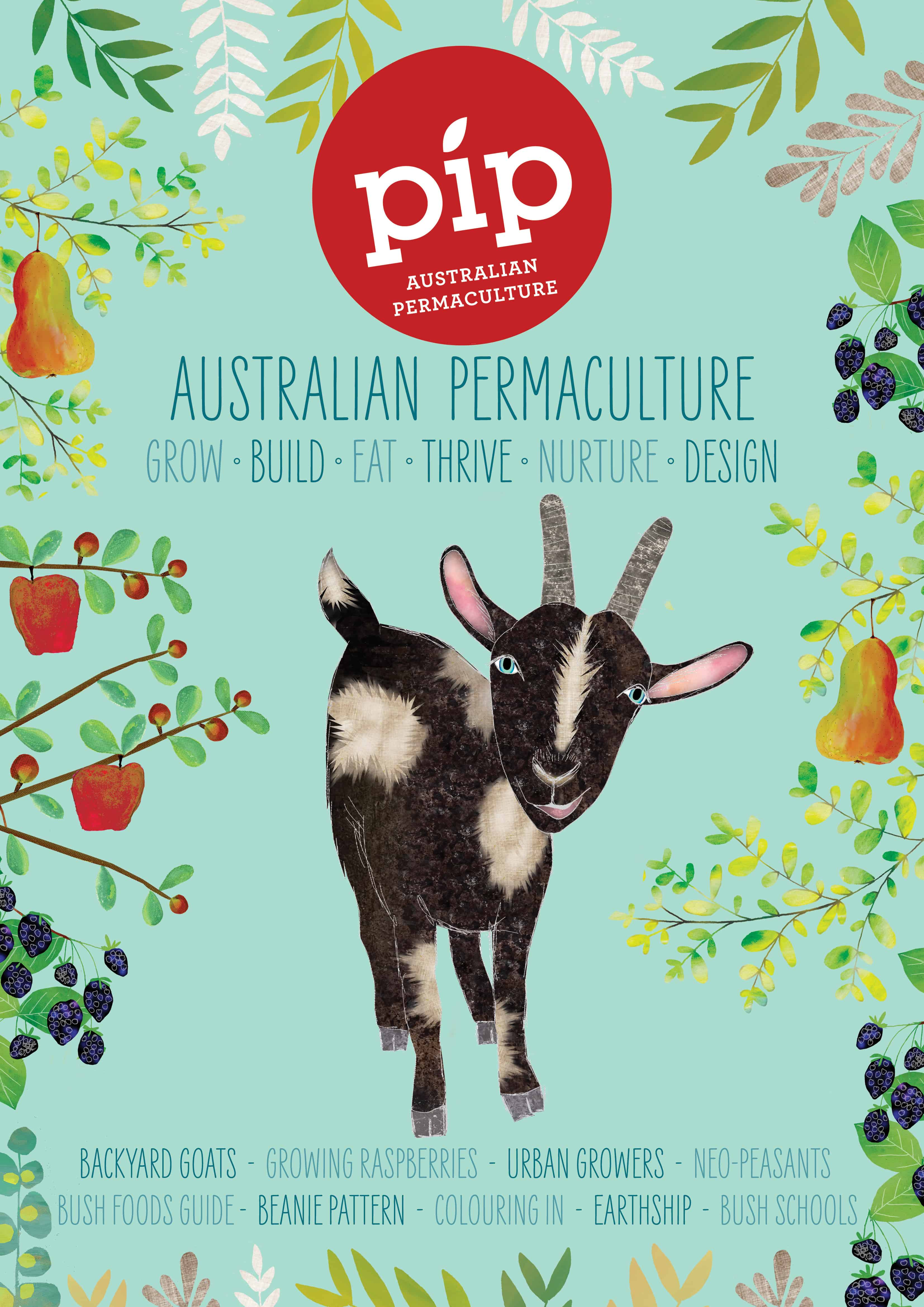 Pip Issue 8 is here!