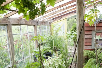 How to: Build an Attached Greenhouse