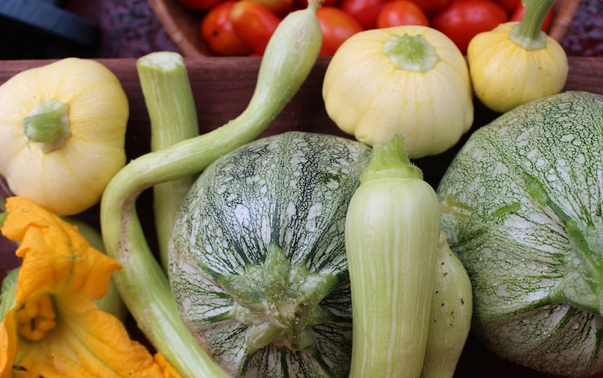 Simple Skills for Self-Sufficiency