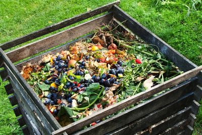 Composting Food Waste: A Beginner's Guide
