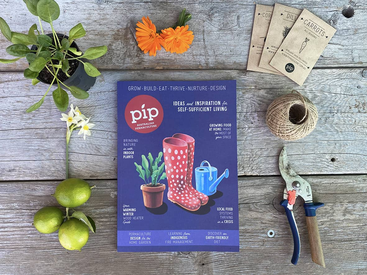 Pip Magazine Issue 17