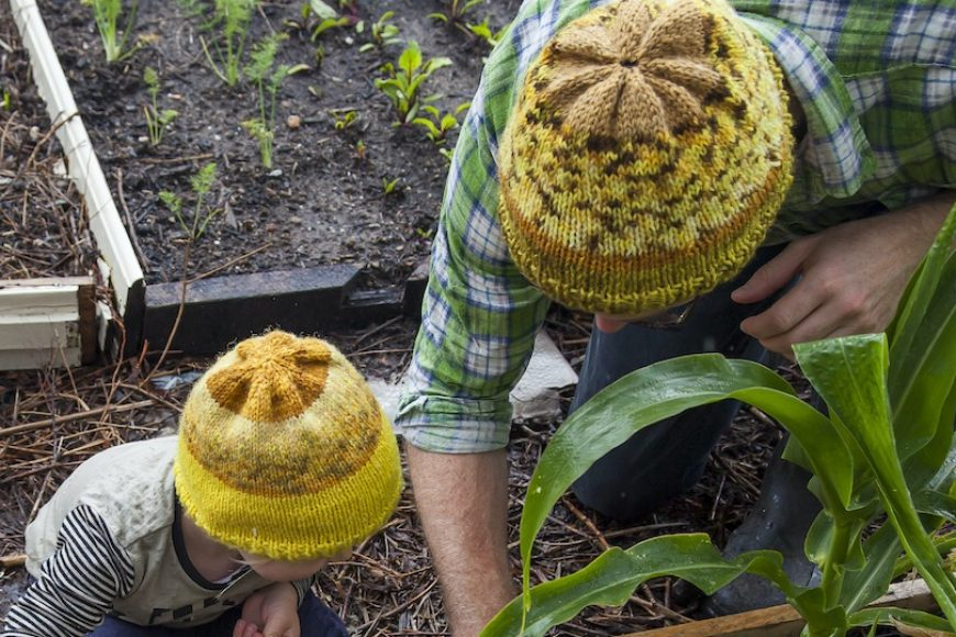 Basic Beanie Pattern for Beginner Knitters
