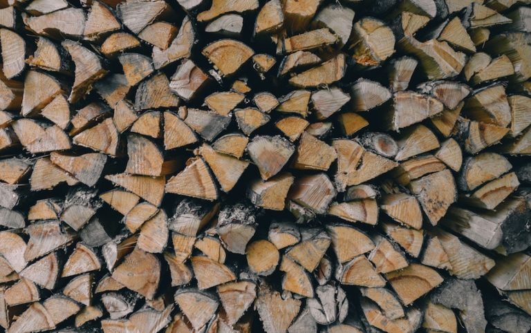 Urban Firewood Forager's Guide andrew-ridley-via-unsplash