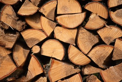 Urban Firewood Forager's Guide