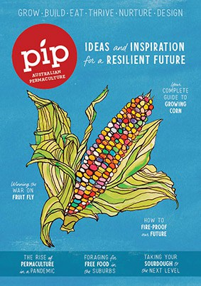 000_000_Pip_Issue18_CoverLR