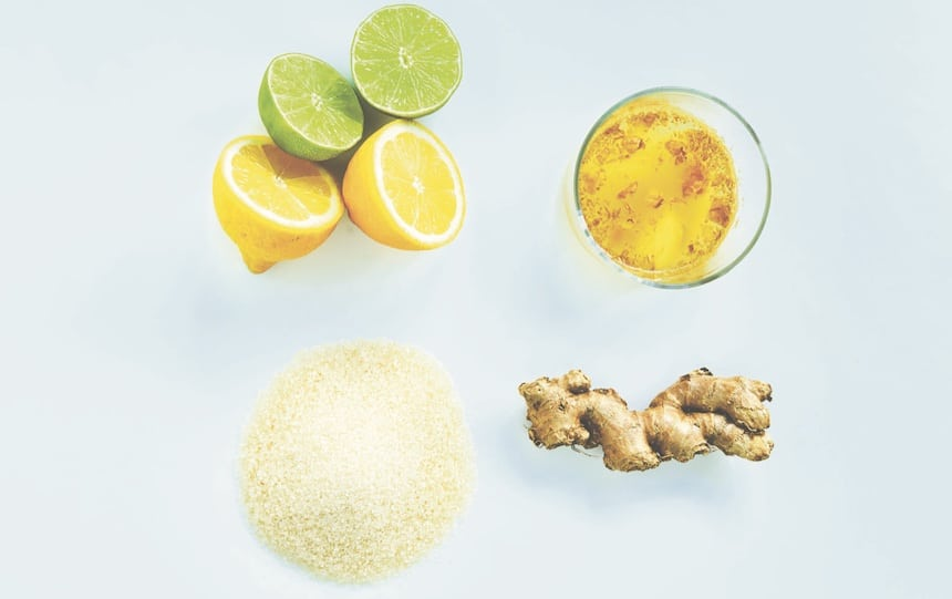 Easy ginger beer recipe