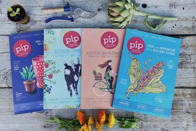 Help Support Pip's Crowdfunding Campaign