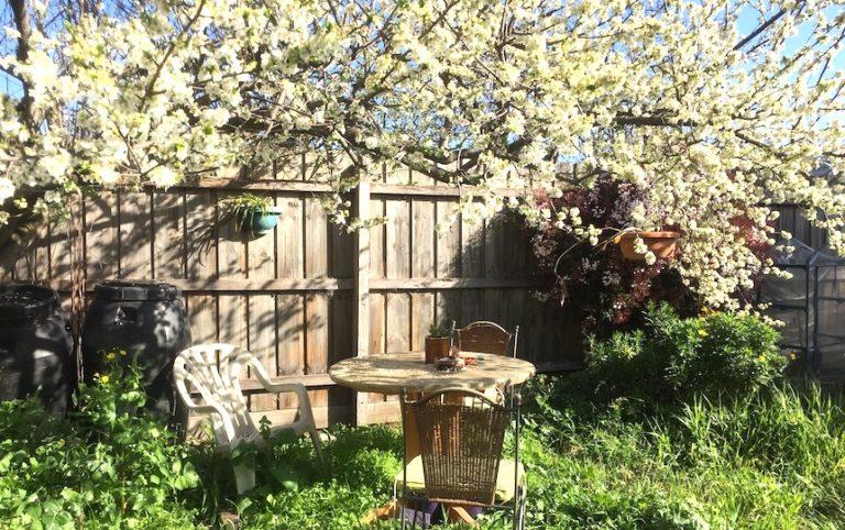 rental gardening