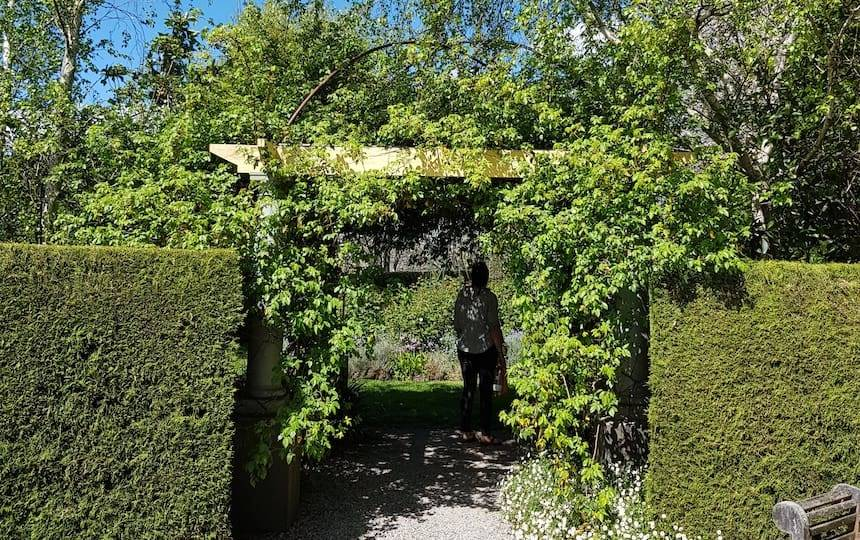 Employing Deciduous Shade In Your Home and Garden 1