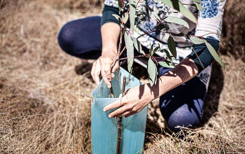 The Benefits of Joining a Landcare Group