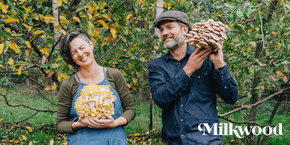 Milkwood Mushroom