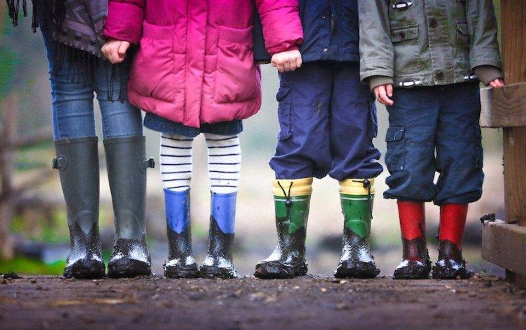 Sustainability Activities for Kids